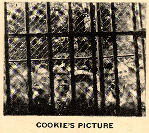 The first ever photograph taken by an ape (called Cookie).